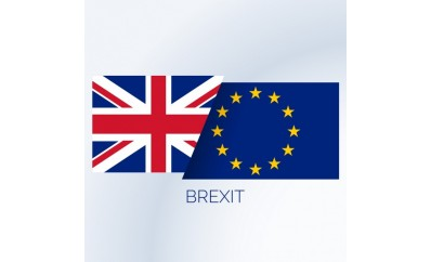Procurement and the Brexit debate